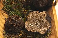 Truffles, truffles and more truffles