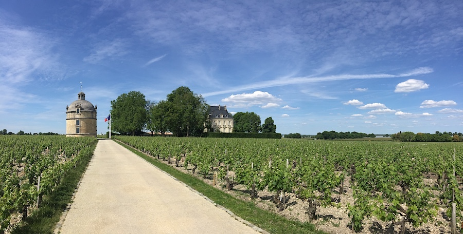 First Growth Chateau Latour in Pauillac